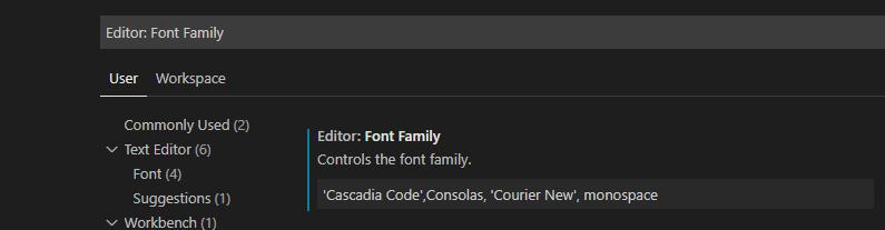 VS Code Font